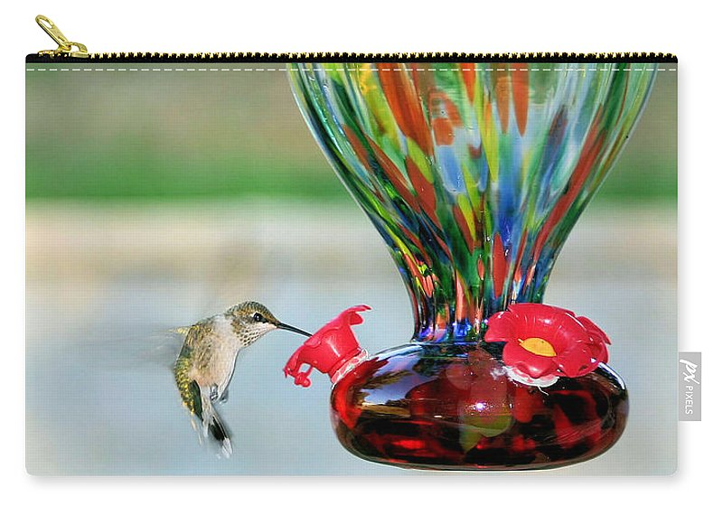Hummingbird Carry-all Pouch featuring the photograph Mrs. Hummer by Kristin Elmquist