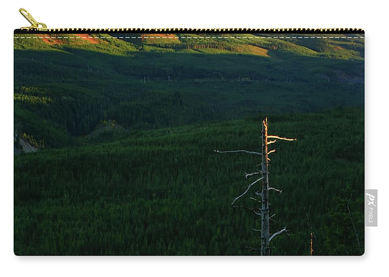 Mt Hood Carry-all Pouch featuring the photograph Mt Hood With Snag by Albert Seger