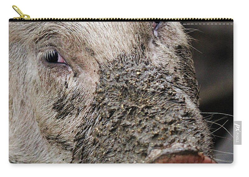Pig Carry-all Pouch featuring the photograph Mud Face by Jennifer Robin