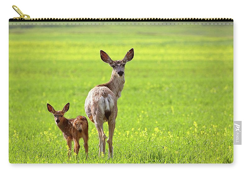 Mule Deer Carry-all Pouch featuring the digital art Mule Deer Doe And Fawn Looking Back Over Their Shoulders by Mark Duffy