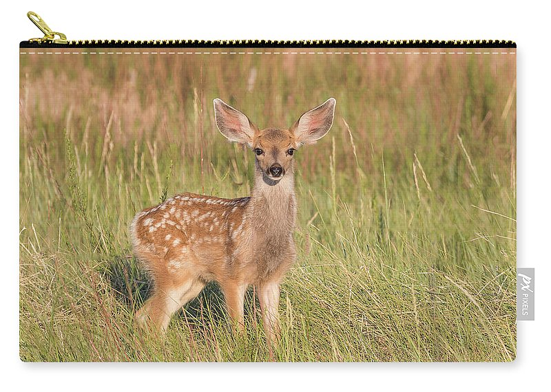 Deer Carry-all Pouch featuring the photograph Mule Deer Fawn Is All Ears by Tony Hake