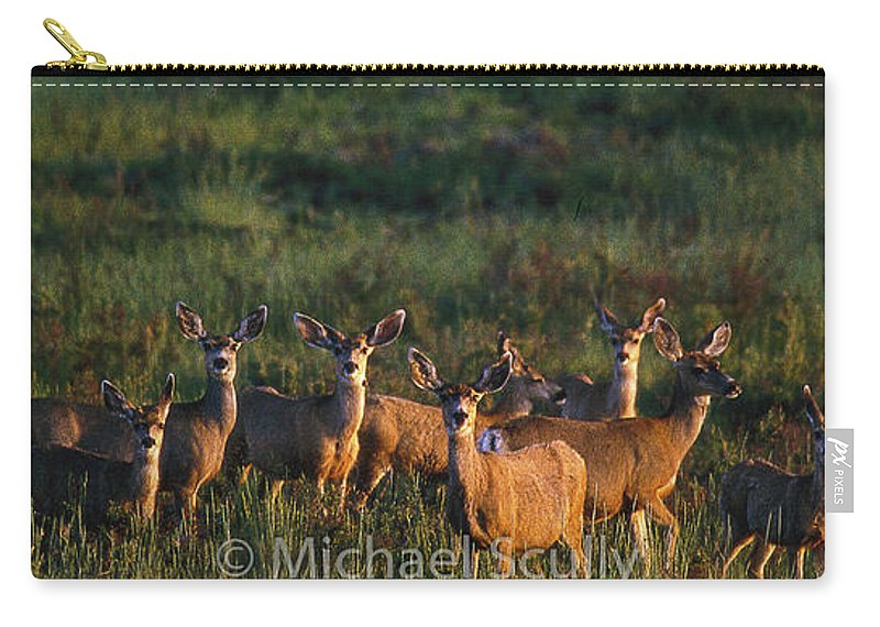 Arizona Carry-all Pouch featuring the photograph Mule Deer In Velvet 04 by Michael Scully