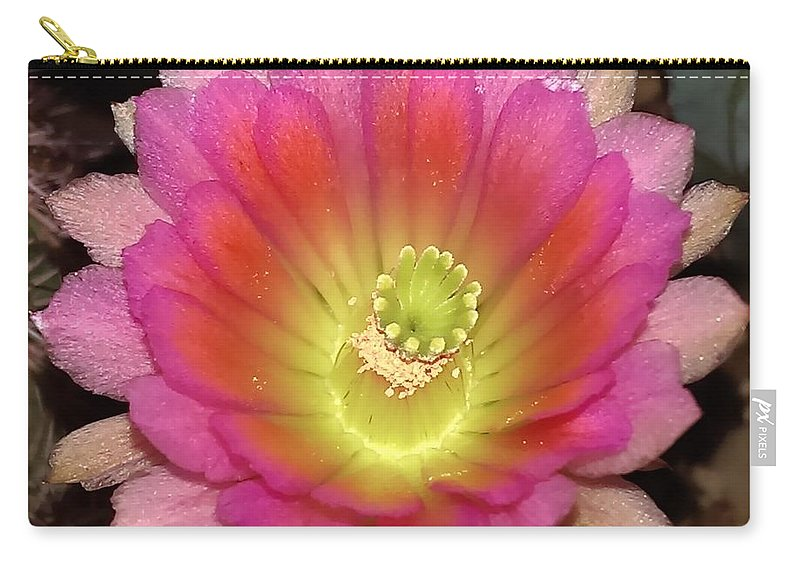 Flower Carry-all Pouch featuring the photograph Multi Color Flower by Nick Blake