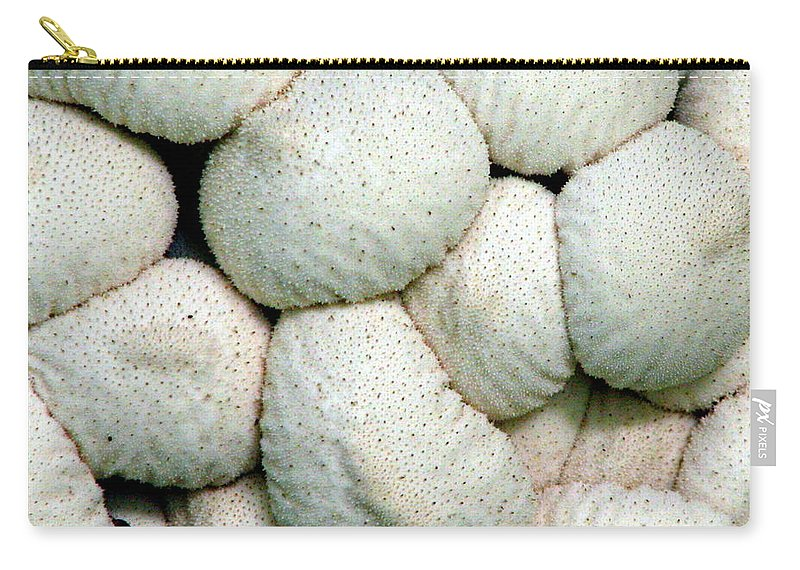 Mushrooms Carry-all Pouch featuring the photograph Mushroom Cluster by J M Farris Photography