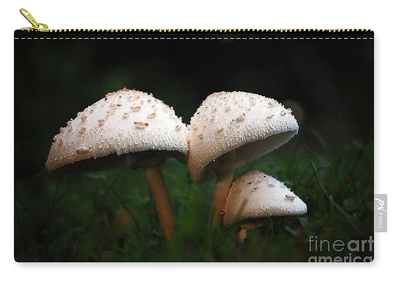 Mushrooms Carry-all Pouch featuring the photograph Mushrooms In The Morning by Robert Meanor