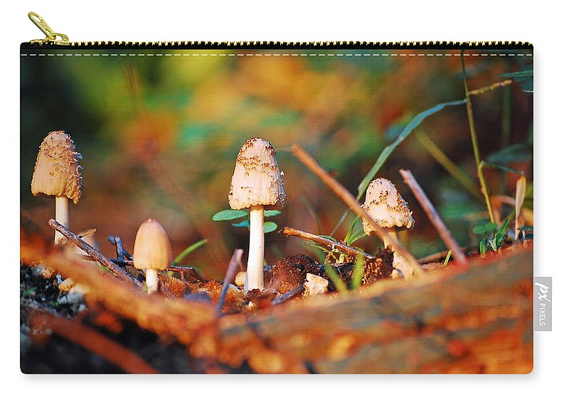 Mushrooms Carry-all Pouch featuring the photograph Mushrooms by Robert Meanor