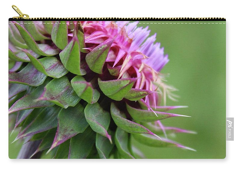 Photograph Carry-all Pouch featuring the photograph Musk Thistle In Bloom by Mandy Elliott