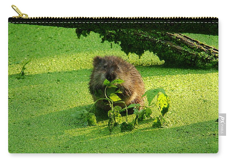 Brown Carry-all Pouch featuring the photograph Muskrat Susie Or Muskrat Sam by Shelley Neff