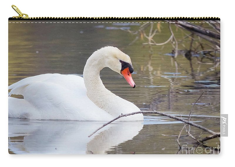 Mute Swans Carry-all Pouch featuring the photograph Mute Swan I by Karen Jorstad