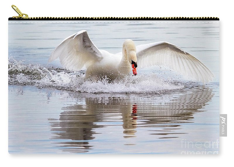 Mute Swan Carry-all Pouch featuring the photograph Mute Swan Plunge by Karen Jorstad