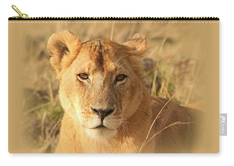 Lioness Carry-all Pouch featuring the photograph My Lion Eyes by Sue Long