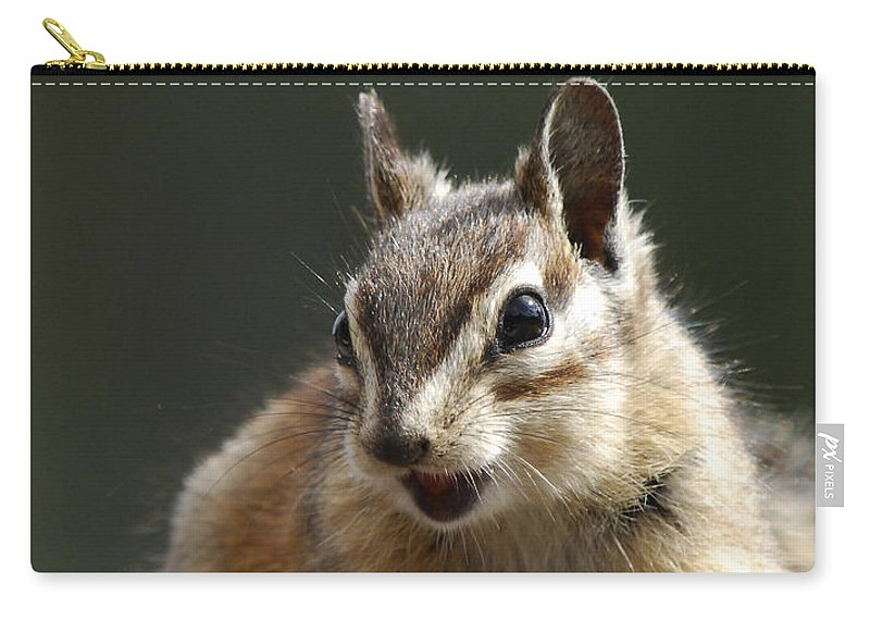 Squirrel Carry-all Pouch featuring the photograph My Name Is Alvin by Donna Blackhall