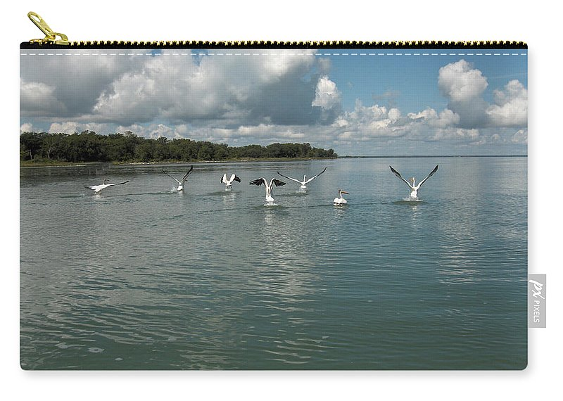 Pelicans Lake Water Trees Shore Beach Clouds Birds Water Foul Carry-all Pouch featuring the photograph My Pelicans by Andrea Lawrence