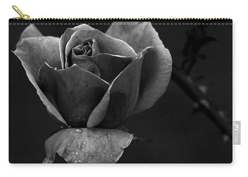 Photo Art Carry-all Pouch featuring the photograph My Time To Come... by Nina Stavlund