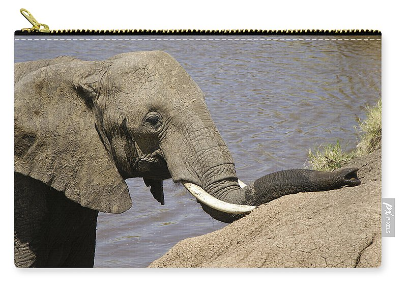 Africa Carry-all Pouch featuring the photograph My Trunk Needs Drying Out by Michele Burgess