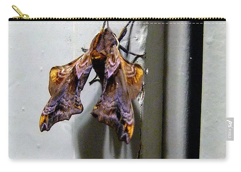 Macro Carry-all Pouch featuring the photograph Mysterious Visitor by RC DeWinter