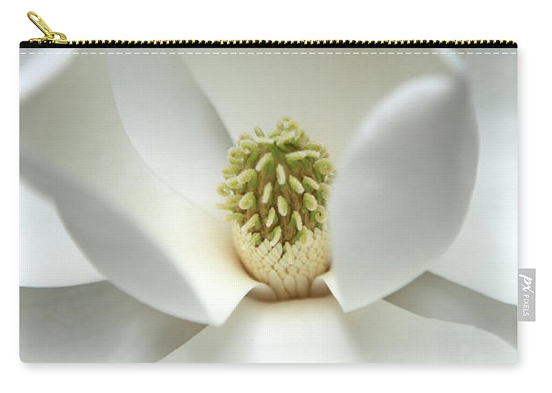 Magnolia Carry-all Pouch featuring the photograph Mysteriously by Amanda Barcon