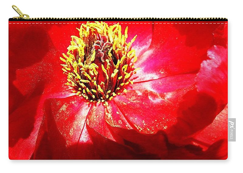 Garden Carry-all Pouch featuring the photograph Mystical ... by Juergen Weiss