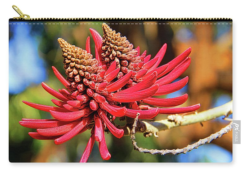 Coral Tree Flower Carry-all Pouch featuring the photograph Naked Coral Tree Flower by Mariola Bitner