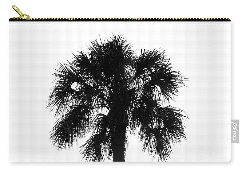 Palm Tree Carry-all Pouch featuring the photograph Naked Palm by David Lee Thompson