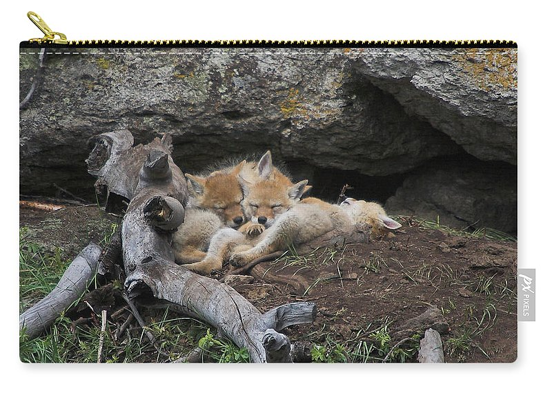 Coyote Carry-all Pouch featuring the photograph Nap Time by Steve Stuller