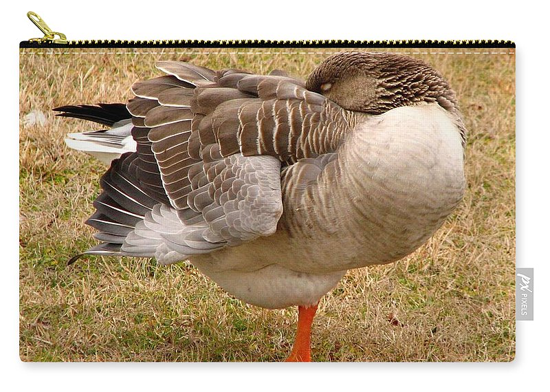 Goose Carry-all Pouch featuring the photograph Naptime by J M Farris Photography