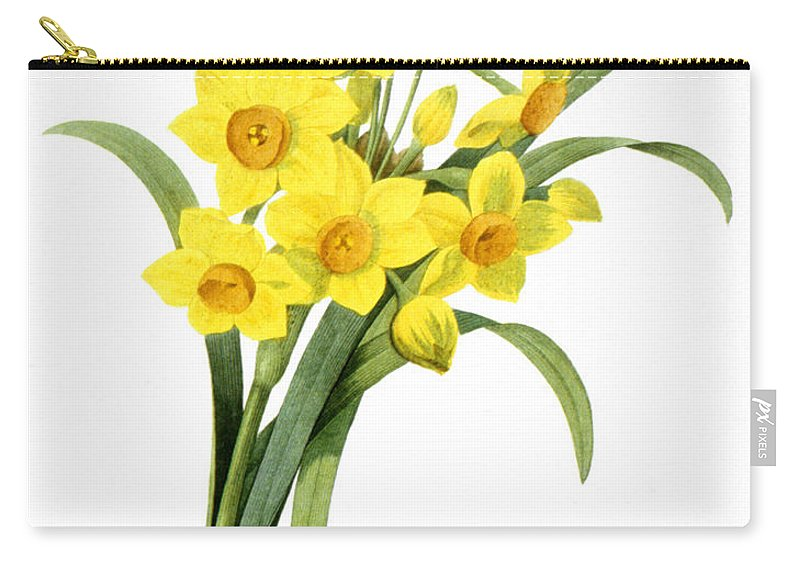 1833 Carry-all Pouch featuring the photograph Narcissus (n. Tazetta) by Granger