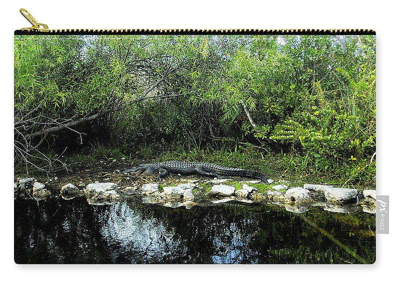 Art Carry-all Pouch featuring the painting Native Floridian by David Lee Thompson