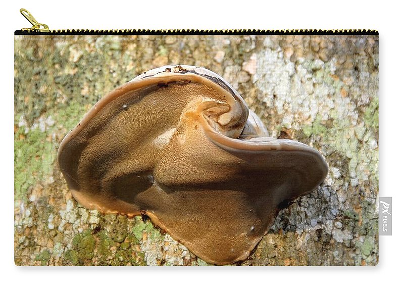 Fungus Carry-all Pouch featuring the photograph Natural Art by David Lee Thompson