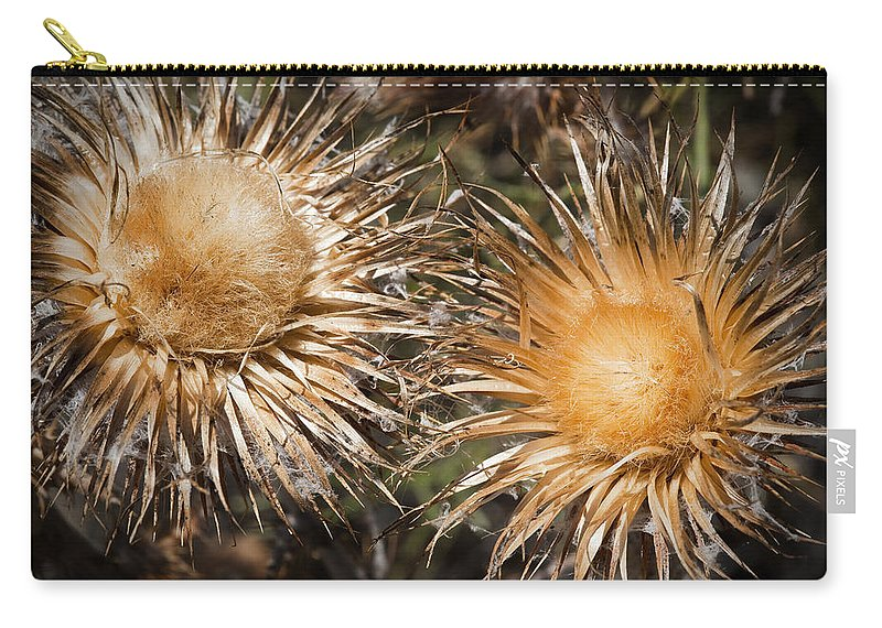 Weeds Carry-all Pouch featuring the photograph Natural Beauties by Kelley King