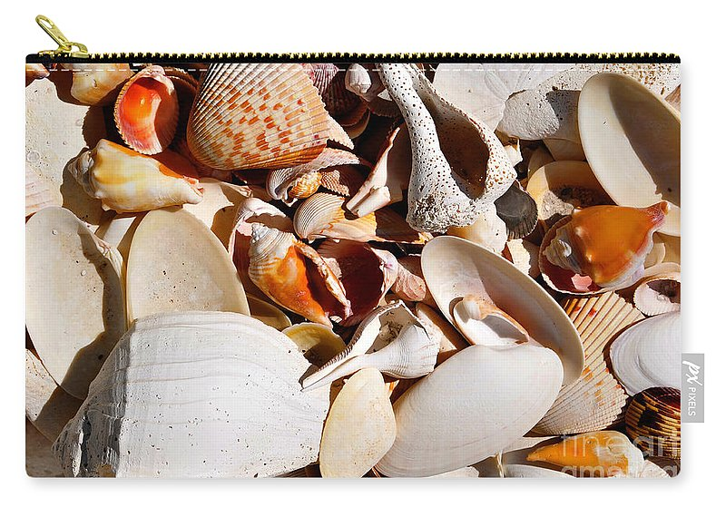 Fine Art Photography Carry-all Pouch featuring the photograph Natural Florida by David Lee Thompson