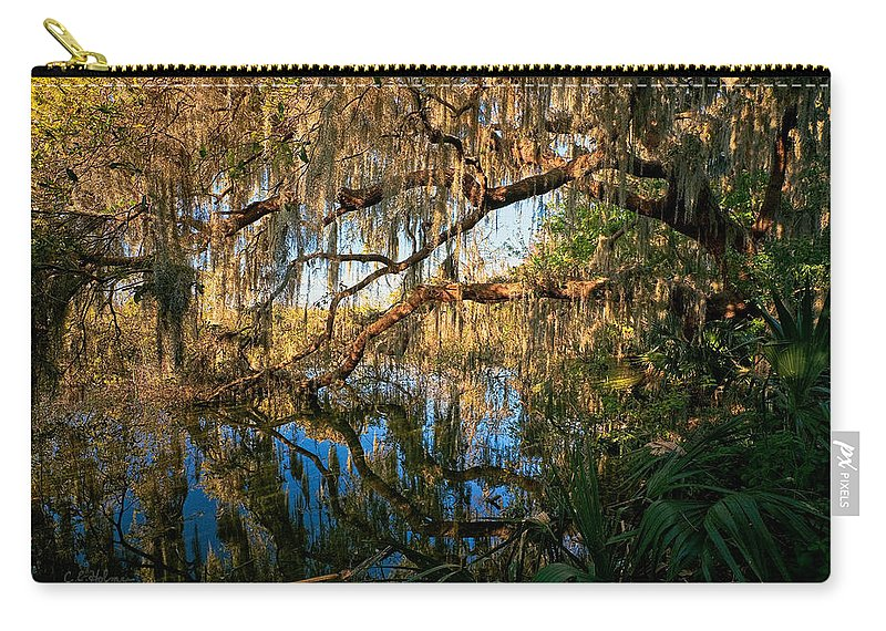 Landscape Carry-all Pouch featuring the photograph Naturally Florida by Christopher Holmes