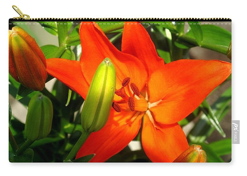Flower Carry-all Pouch featuring the photograph Naturally Intense by Ian MacDonald