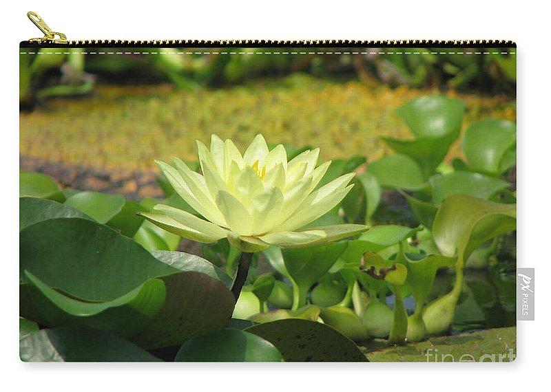 Nature Carry-all Pouch featuring the photograph Nature by Amanda Barcon