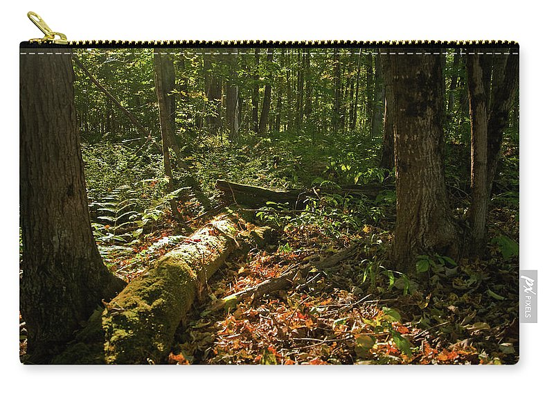 vermont Carry-all Pouch featuring the photograph Nature At Work by Paul Mangold