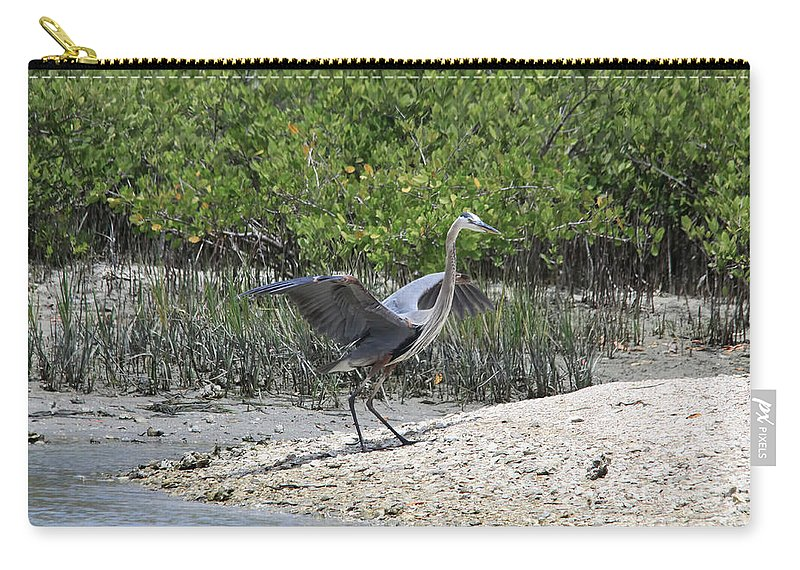 Blue Heron Carry-all Pouch featuring the photograph Nature In Florida by Deborah Benoit