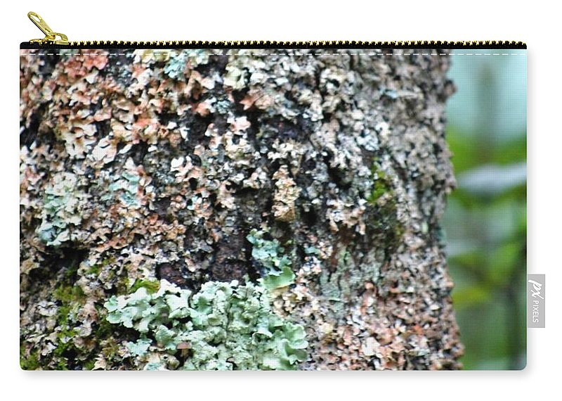 Digital Photograph Carry-all Pouch featuring the photograph Nature Painted Tree Bark by David Lane