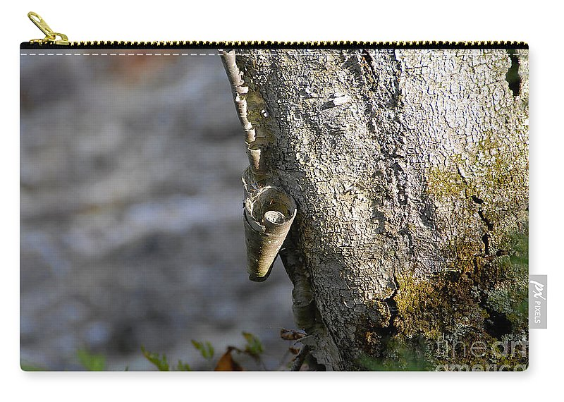 Wood Carry-all Pouch featuring the photograph Nature's Detail by David Lee Thompson
