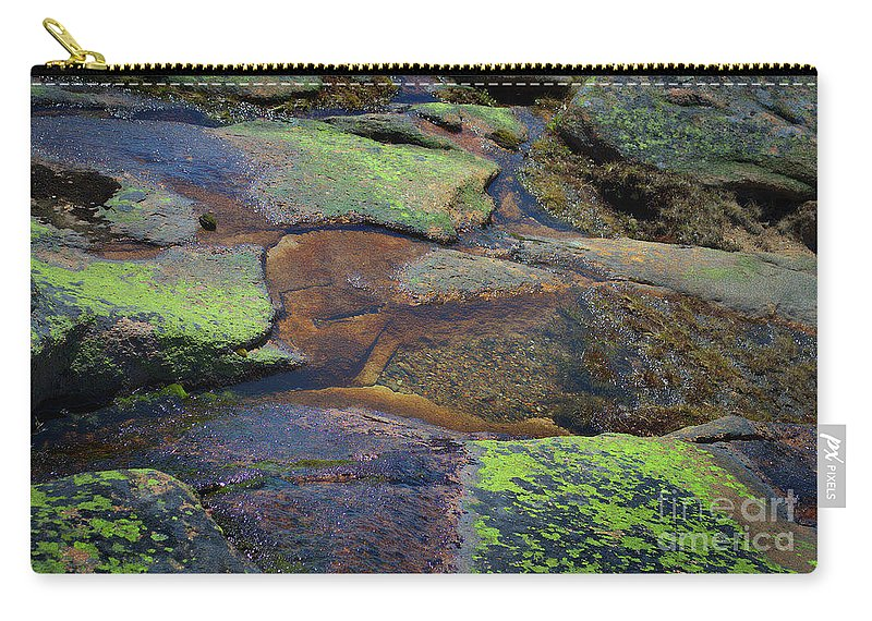 Nature Carry-all Pouch featuring the photograph Nature's Mosaic No. 1 by Skip Willits
