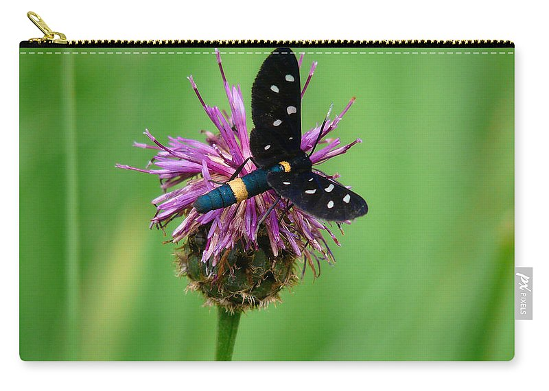 Insect Carry-all Pouch featuring the photograph Nectar Time by Jane Selverstone