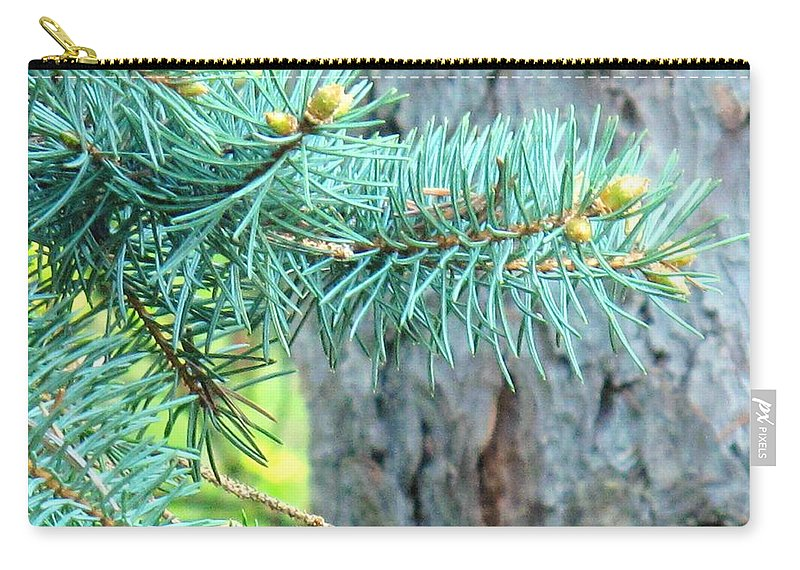 Pine Carry-all Pouch featuring the photograph Needles by Ian MacDonald