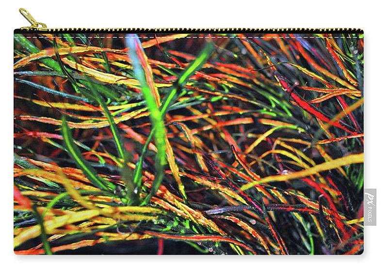 Color Carry-all Pouch featuring the photograph Needles Of Color by Jost Houk