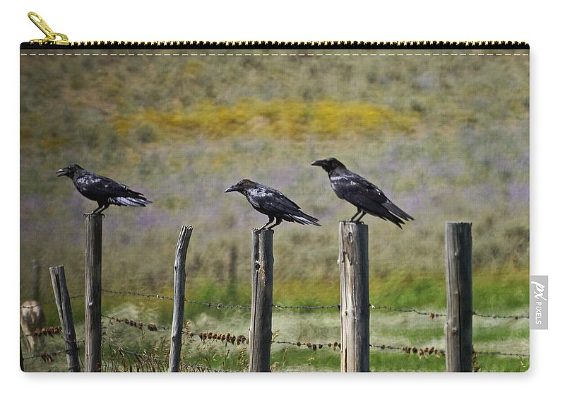 Crows Carry-all Pouch featuring the photograph Neighborhood Watch Crows by Heather Coen