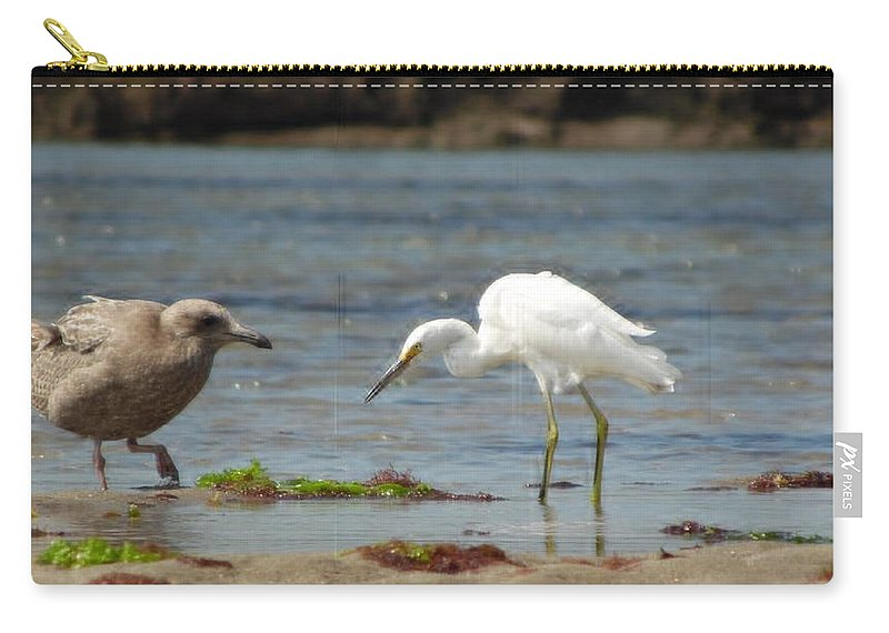 Birds Carry-all Pouch featuring the photograph Neighbors by Julie Houle