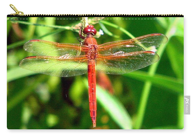 Dragonfly Carry-all Pouch featuring the photograph Neon Skimmer 1 by J M Farris Photography
