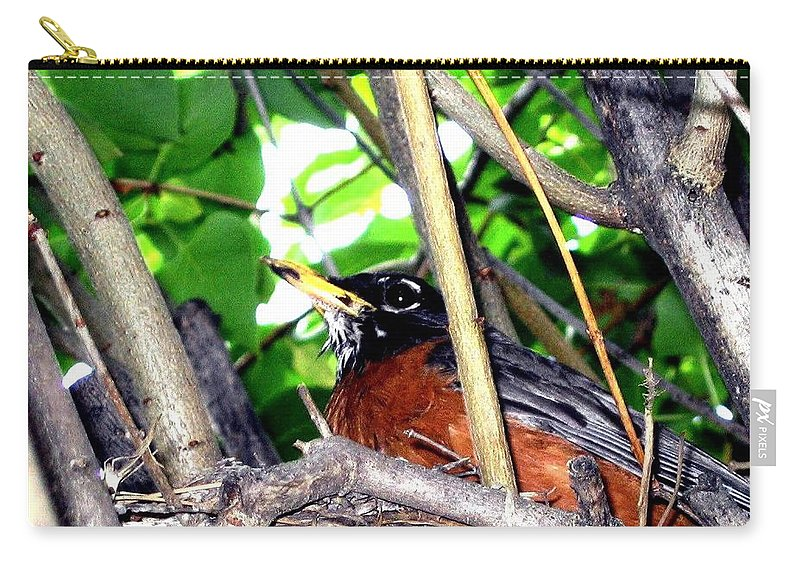 Robin Carry-all Pouch featuring the photograph Nesting Robin by Will Borden