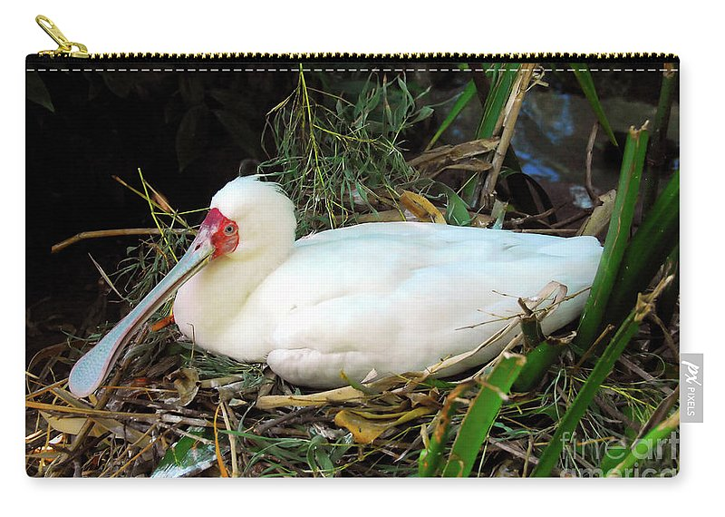 Photography Carry-all Pouch featuring the photograph Nesting Spoonbill by David Lee Thompson