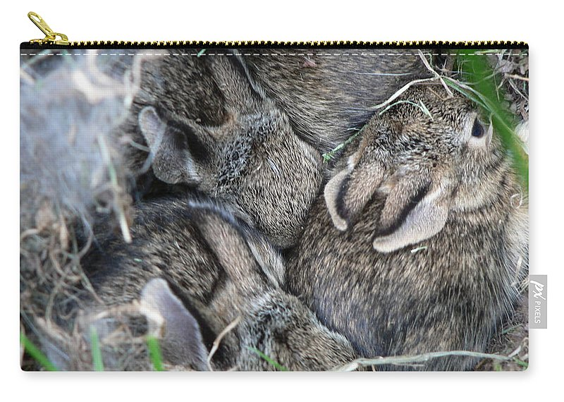 Bunny Carry-all Pouch featuring the photograph Nestled In Their Den by Laurel Best