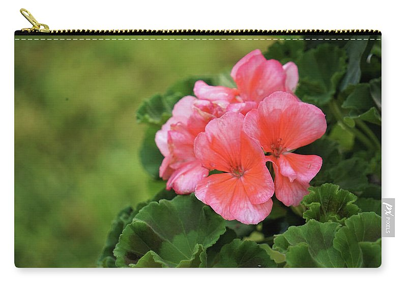 Flower Carry-all Pouch featuring the photograph Nestled  by Karen Beasley