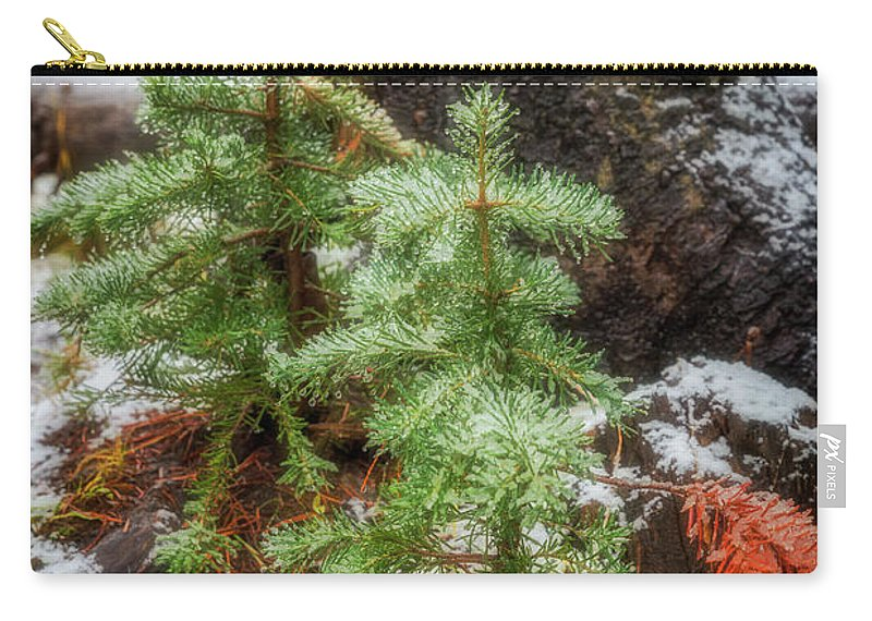 Green Carry-all Pouch featuring the photograph New Beginnings by Cat Connor